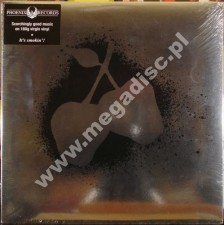 Silver Apples - UK Phoenix Press