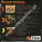 FLAMIN GROOVIES - Gonna Rock Tonite! - Complete Recordings 1969-71 (3CD) - UK Grapefruit Expanded Edition - POSŁUCHAJ